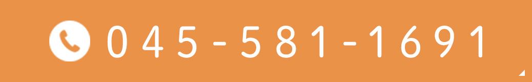 045-581-1691